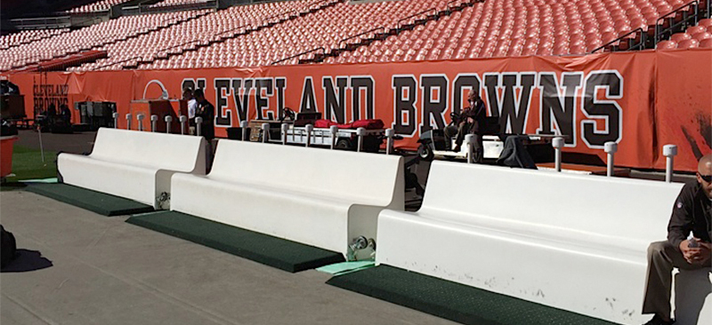 dragon seats on the sidelines of an NFL game